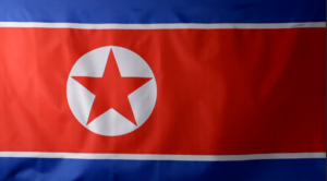 North Korea Armed Flag PIC